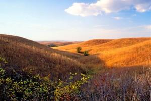 autumn_prairie_landscape_800-1